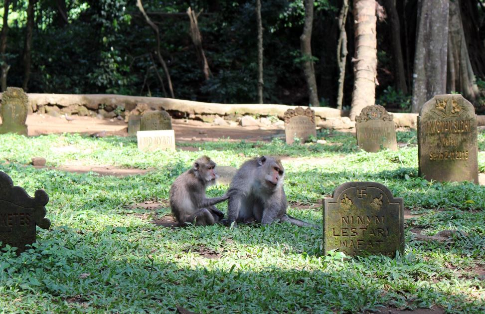 Village Bans Bali Family From Burying Mother In Cemetary Due To Unpaid Debt