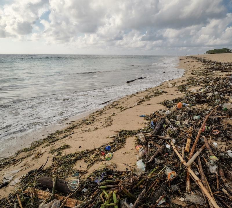 coastal waste and plastic on beach
