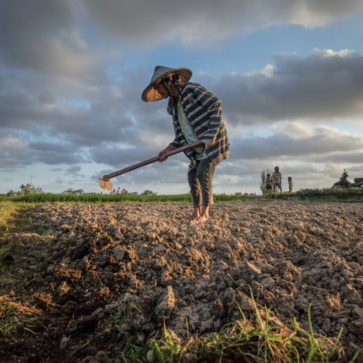 Bali Prepares To Send Farmers In Tabanan To Work Overseas