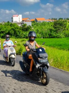 Indonesian President To Reopen Bali When COVID-19 Transmission Is Reduced