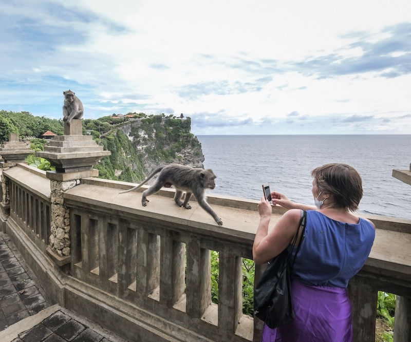 tourist on cliff monkeys