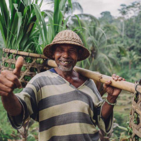 Bali Vice Governor, Tjokorda Oka Artha Ardana Suakwati (Cok Ace) has confirmed that over 900,000 of Bali residents have received the Covid-19 vaccine.