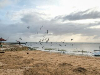 Local vendors at Penimbangan Beach located in Galiran village, Buleleng began to starve as they have become unable to operate due to the implementation of the emergency partial lockdown in Bali.